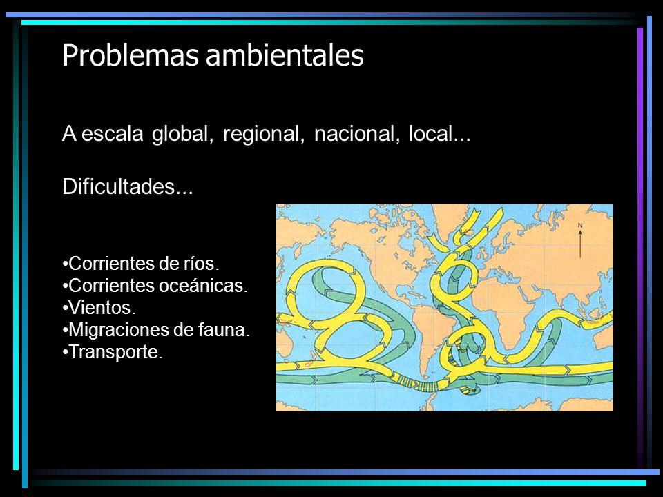 Problemas ambientales A escala global, regional, nacional, local... Dificultades... Corrientes de ríos. Corrientes oceánicas. Vientos. Migraciones de
