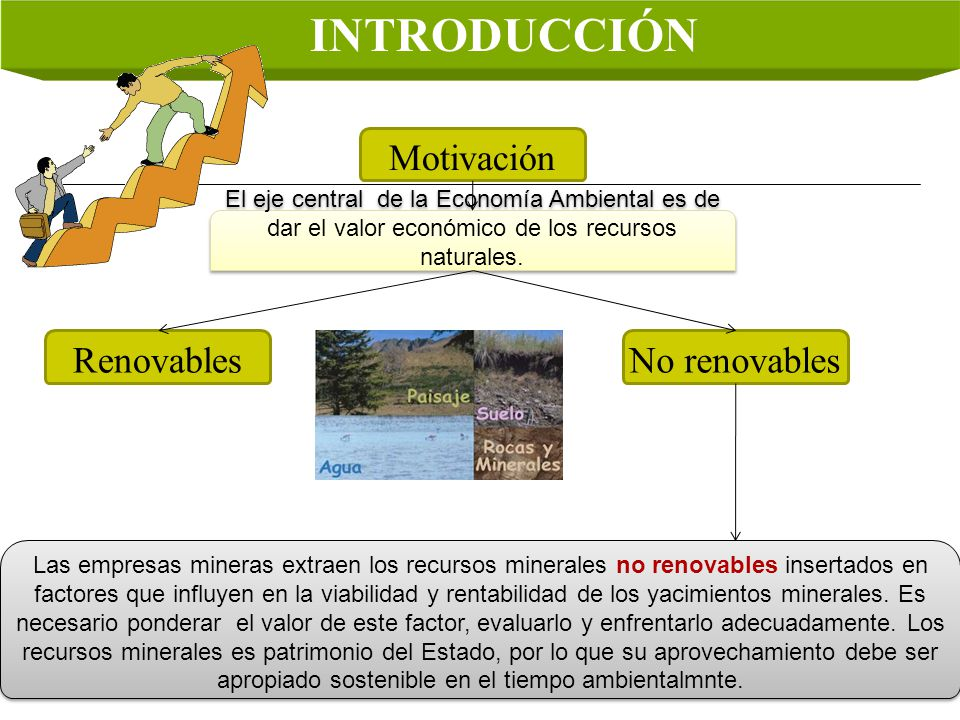 INTRODUCCIÓN Motivación El eje central de la Economía Ambiental es de dar el valor económico de los recursos naturales. RenovablesNo renovables Las em