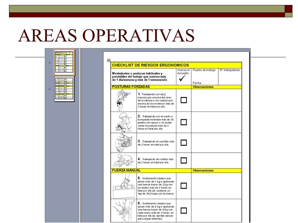 AREAS OPERATIVAS