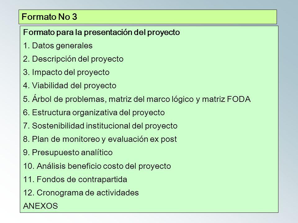 Formato No 3 Formato para la presentación del proyecto 1.