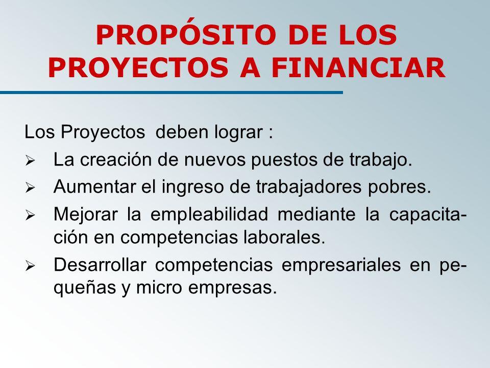 Los Proyectos deben lograr : La creación de nuevos puestos de trabajo.