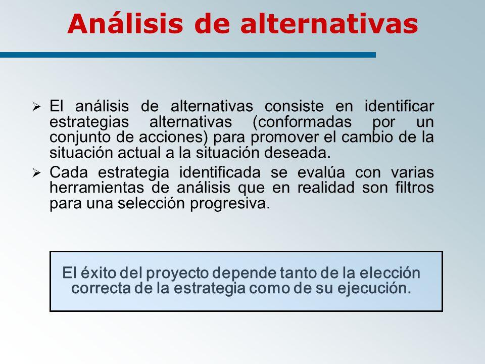 Análisis de alternativas El análisis de alternativas consiste en identificar estrategias alternativas (conformadas por un conjunto de acciones) para promover el cambio de la situación actual a la situación deseada.