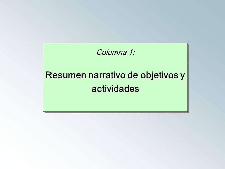 Columna 1: Resumen narrativo de objetivos y actividades Columna 1: Resumen narrativo de objetivos y actividades