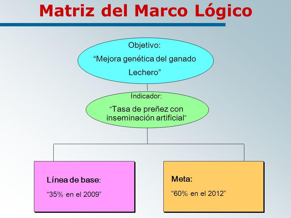 Matriz del Marco Lógico Objetivo: Mejora genética del ganado Lechero Indicador: Tasa de preñez con inseminación artificial Línea de base : 35% en el 2009 Meta: 60% en el 2012