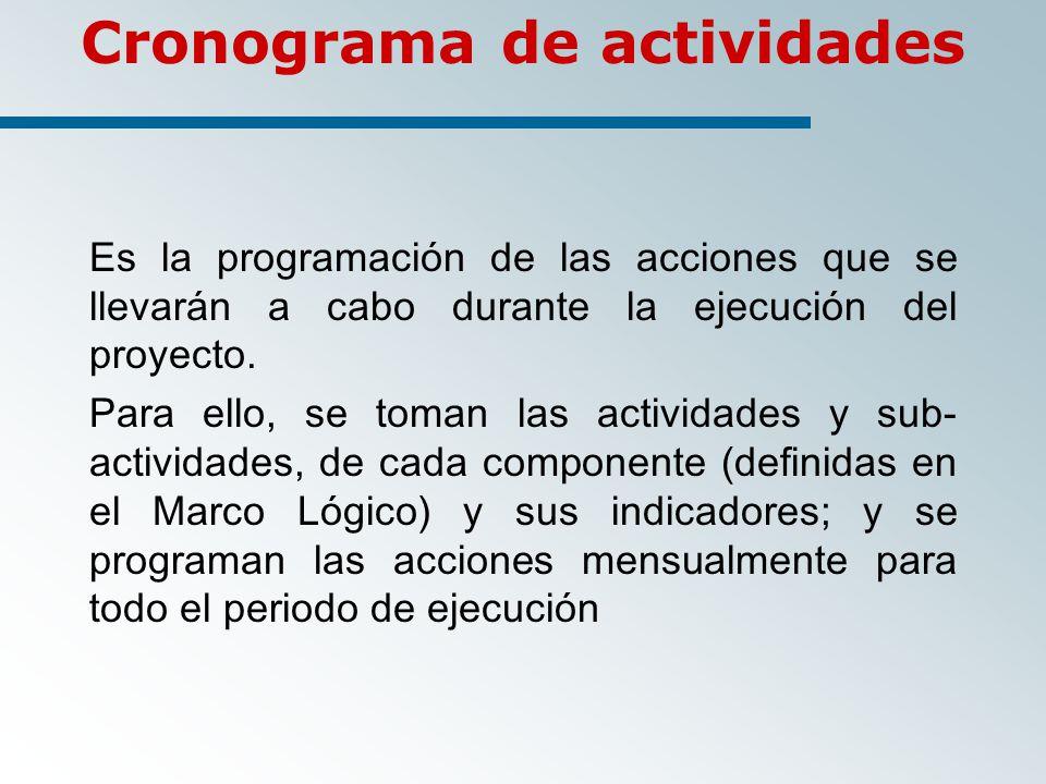 Es la programación de las acciones que se llevarán a cabo durante la ejecución del proyecto.