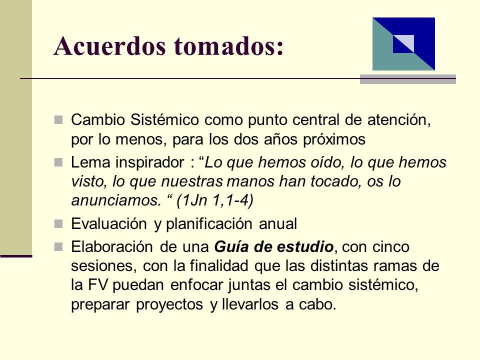 Últimos acuerdos (2008) Plan de sesiones de formación, en los próximos años (2008-2010), para algunos miembros de la Familia Vicentina Objetivo: facilitar la comprensión y la promoción del cambio sistémico como un medio para el desarrollo sostenible de los pobres.