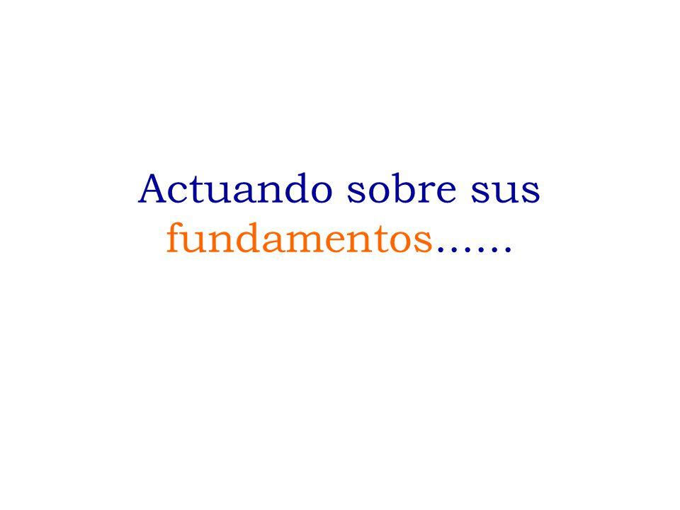 Fuente: PAC, Activos de Conocimiento y Capital Social El Cluster del Espárrago en el Perú