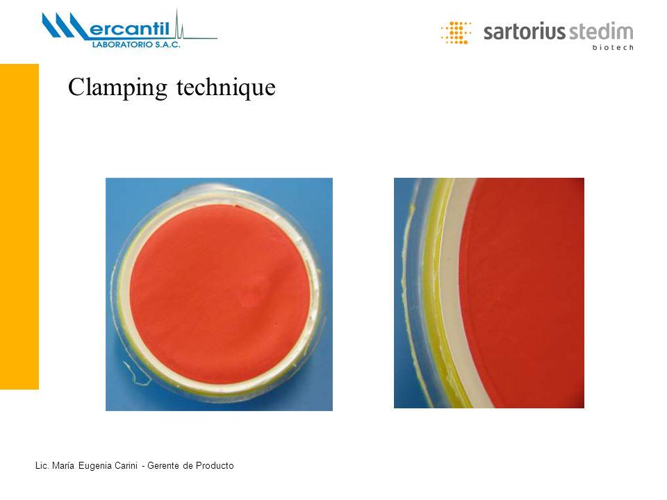 Lic. María Eugenia Carini - Gerente de Producto Clamping technique