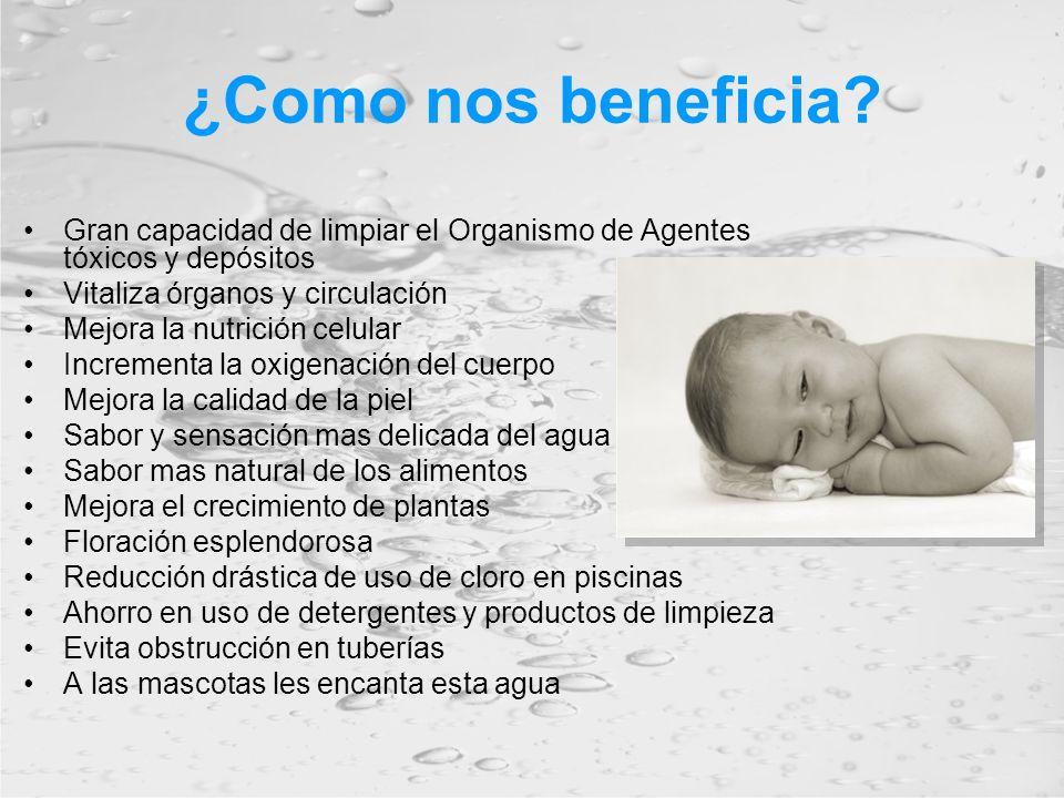 ¿Como nos beneficia? Gran capacidad de limpiar el Organismo de Agentes tóxicos y depósitos Vitaliza órganos y circulación Mejora la nutrición celular