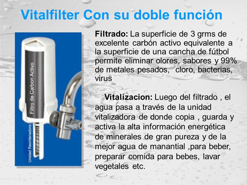 Vitalfilter Con su doble función Filtrado: La superficie de 3 grms de excelente carbón activo equivalente a la superficie de una cancha de fútbol perm