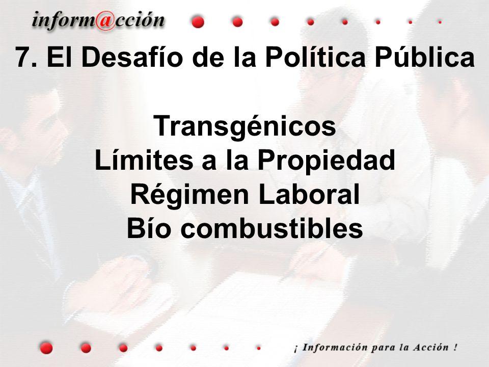7. El Desafío de la Política Pública Transgénicos Límites a la Propiedad Régimen Laboral Bío combustibles