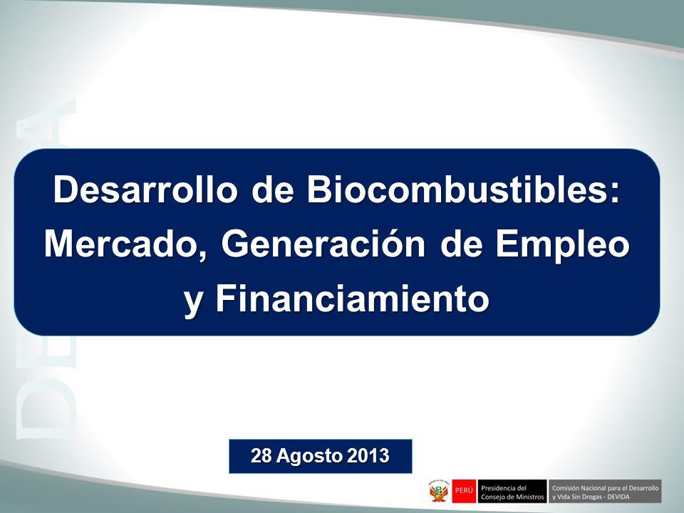Desarrollo de Biocombustibles: Mercado, Generación de Empleo y Financiamiento 28 Agosto 2013