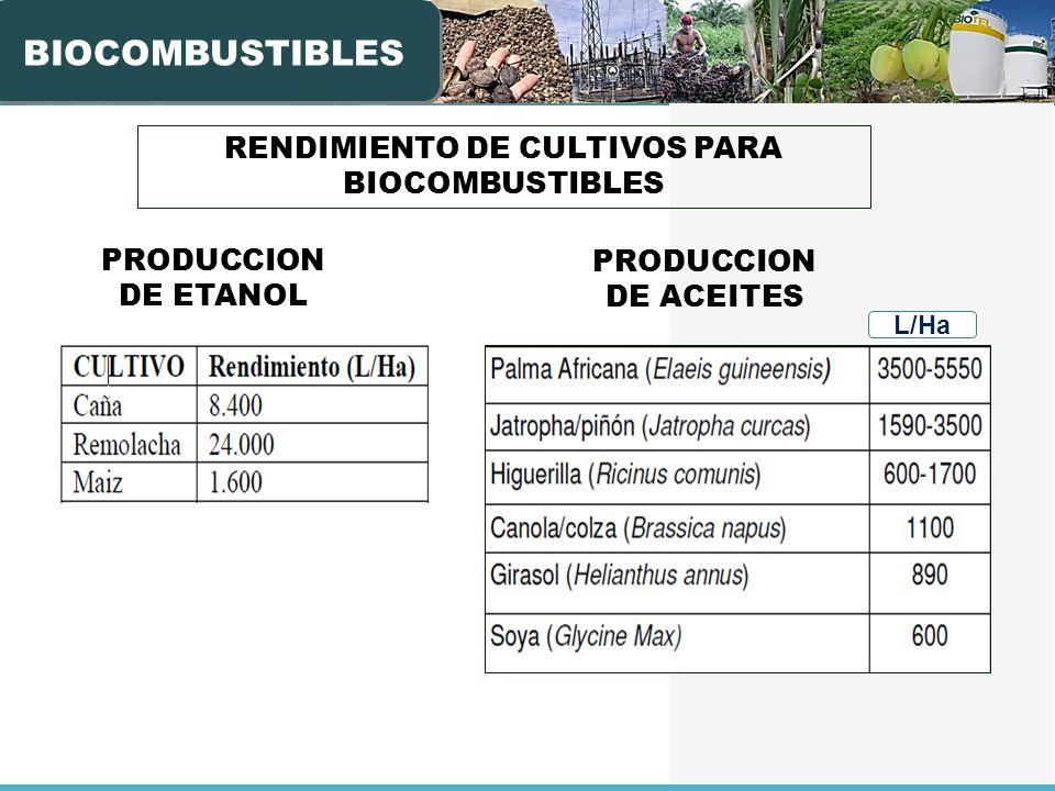 PRODUCCION DE ETANOL BIOCOMBUSTIBLES PRODUCCION DE ACEITES L/Ha RENDIMIENTO DE CULTIVOS PARA BIOCOMBUSTIBLES