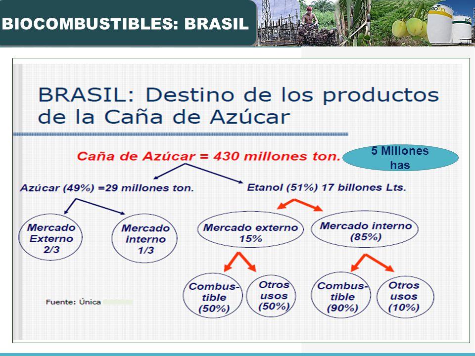 BIOCOMBUSTIBLES: BRASIL 5 Millones has