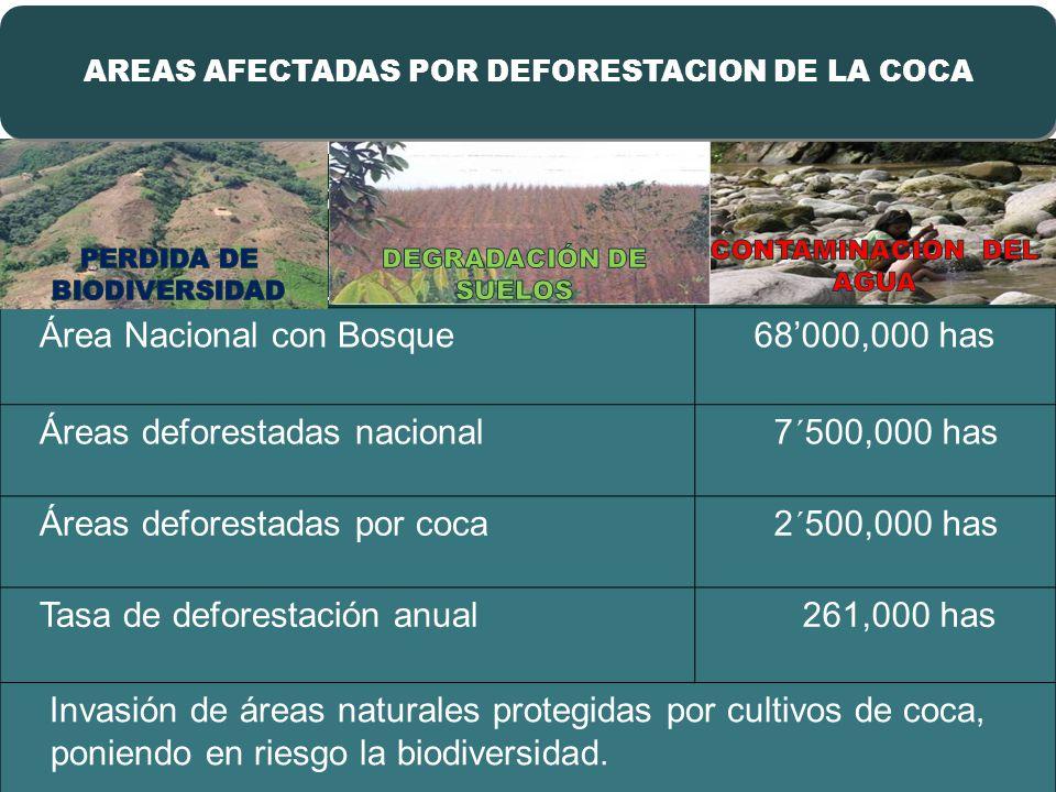 Deforestación por Coca afecta la Amazonía CondiciónSuperficie Área Nacional con Bosque 68000,000 has Áreas deforestadas nacional 7´500,000 has Áreas deforestadas por coca 2´500,000 has Tasa de deforestación anual 261,000 has Invasión de áreas naturales protegidas por cultivos de coca, poniendo en riesgo la biodiversidad.