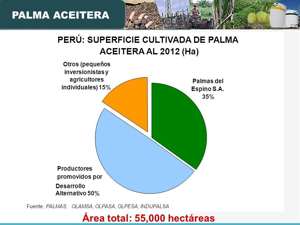 PERÚ: SUPERFICIE CULTIVADA DE PALMA ACEITERA AL 2012 (Ha) Productores promovidos por Desarrollo Alternativo 50% Palmas del Espino S.A. 35% Otros (pequ
