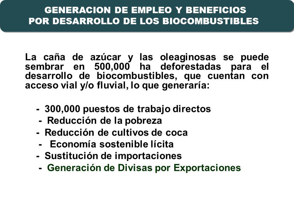 23 GENERACION DE EMPLEO Y BENEFICIOS POR DESARROLLO DE LOS BIOCOMBUSTIBLES GENERACION DE EMPLEO Y BENEFICIOS POR DESARROLLO DE LOS BIOCOMBUSTIBLES La caña de azúcar y las oleaginosas se puede sembrar en 500,000 ha deforestadas para el desarrollo de biocombustibles, que cuentan con acceso vial y/o fluvial, lo que generaría: - 300,000 puestos de trabajo directos - Reducción de la pobreza - Reducción de cultivos de coca - Economía sostenible lícita - Sustitución de importaciones - Generación de Divisas por Exportaciones