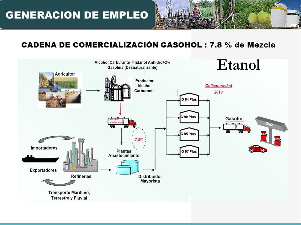 CADENA DE COMERCIALIZACIÓN GASOHOL : 7.8 % de Mezcla GENERACION DE EMPLEO