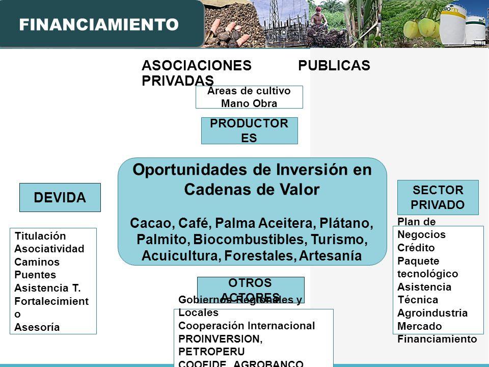 ASOCIACIONES PUBLICAS PRIVADAS DEVIDA PRODUCTOR ES SECTOR PRIVADO Titulación Asociatividad Caminos Puentes Asistencia T.