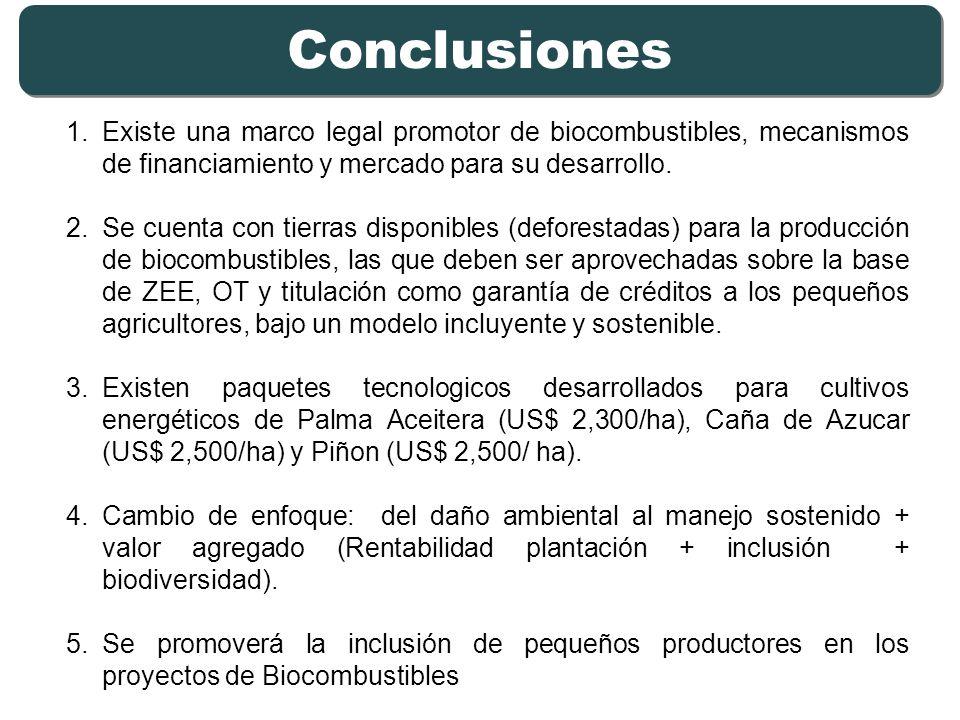 1.Existe una marco legal promotor de biocombustibles, mecanismos de financiamiento y mercado para su desarrollo. 2.Se cuenta con tierras disponibles (