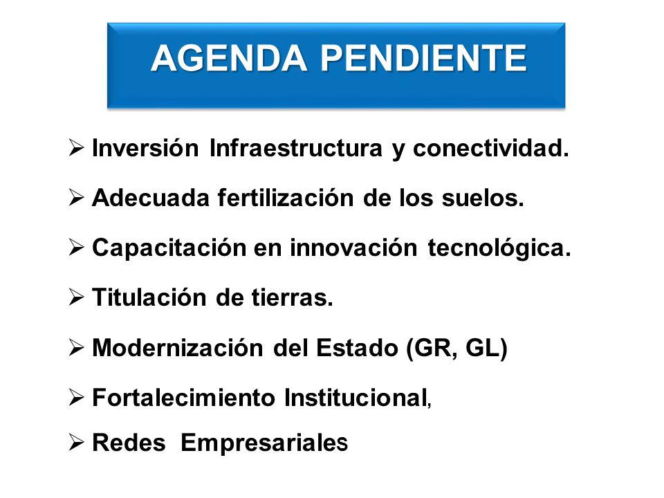 Inversión Infraestructura y conectividad. Adecuada fertilización de los suelos. Capacitación en innovación tecnológica. Titulación de tierras. Moderni
