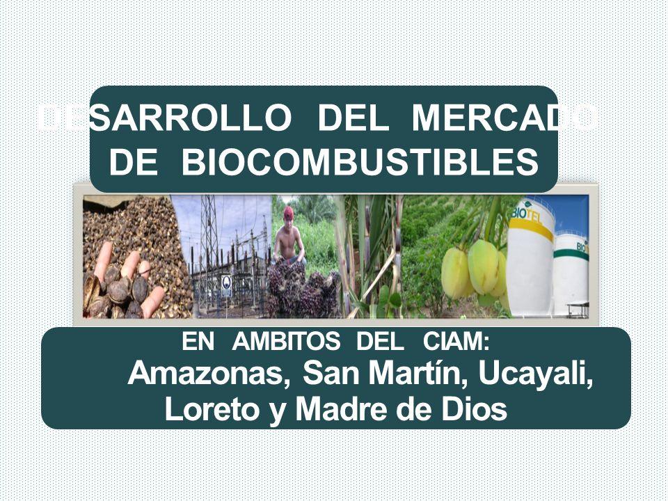 EN AMBITOS DEL CIAM: Amazonas, San Martín, Ucayali, Loreto y Madre de Dios DESARROLLO DEL MERCADO DE BIOCOMBUSTIBLES