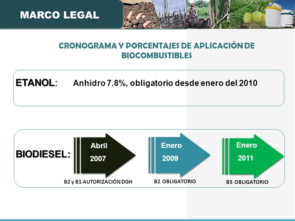 ETANOL: ETANOL: Anhidro 7.8%, obligatorio desde enero del 2010 BIODIESEL: Enero 2011 B5 OBLIGATORIO B2 y B1 AUTORIZACIÓN DGH Abril 2007 Enero 2009 B2 OBLIGATORIO MARCO LEGAL