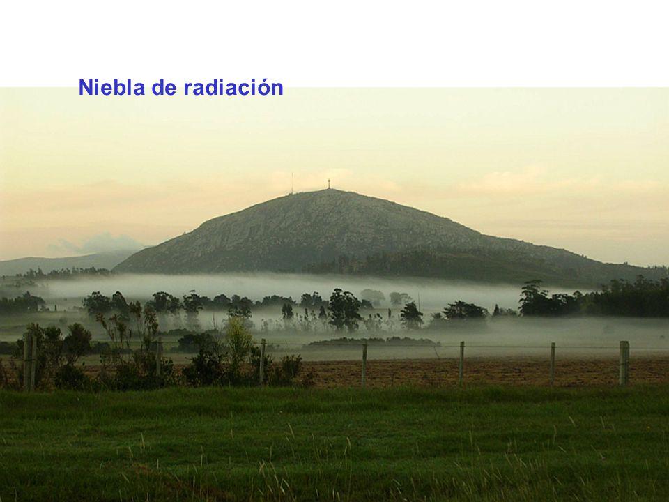 Niebla de radiación