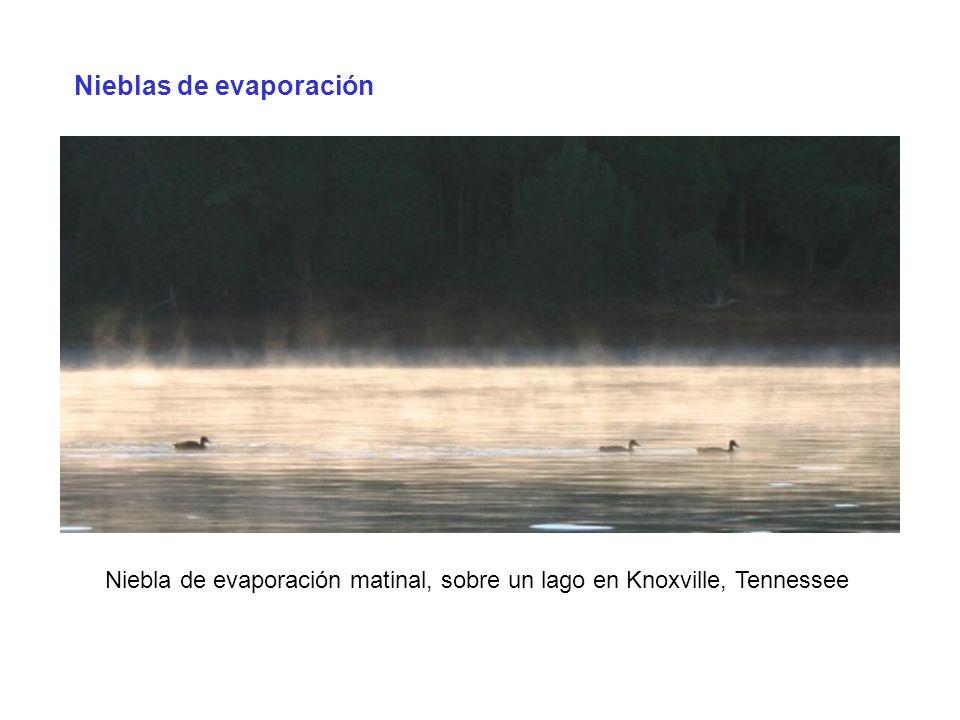Nieblas de evaporación Niebla de evaporación matinal, sobre un lago en Knoxville, Tennessee