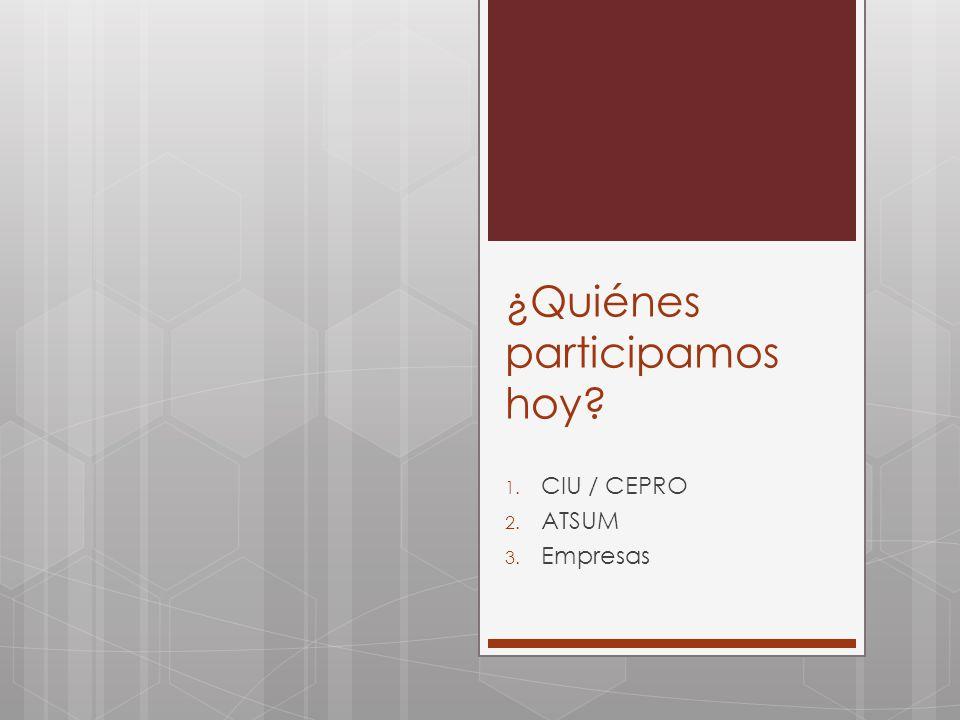 ¿Quiénes participamos hoy? 1. CIU / CEPRO 2. ATSUM 3. Empresas