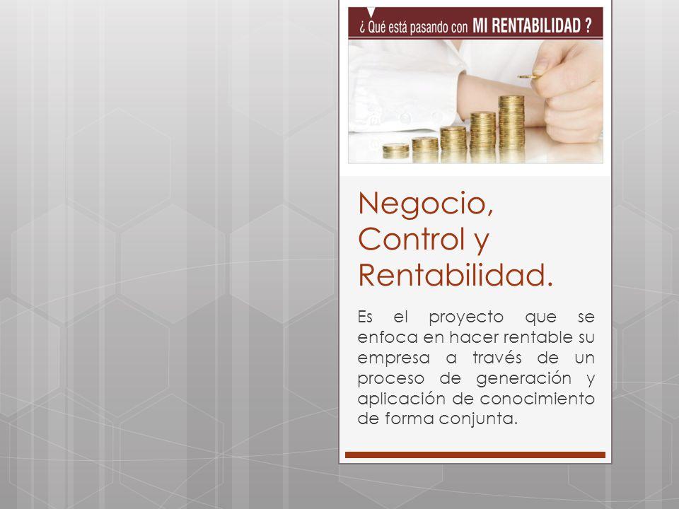 Negocio, Control y Rentabilidad. Es el proyecto que se enfoca en hacer rentable su empresa a través de un proceso de generación y aplicación de conoci