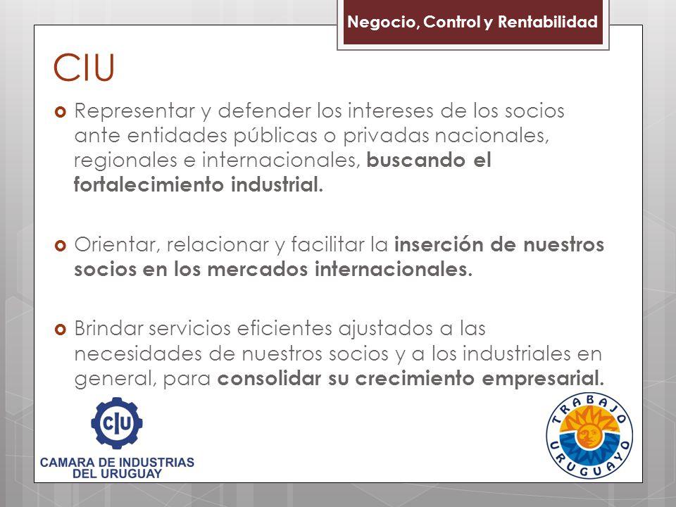 CIU Representar y defender los intereses de los socios ante entidades públicas o privadas nacionales, regionales e internacionales, buscando el fortal