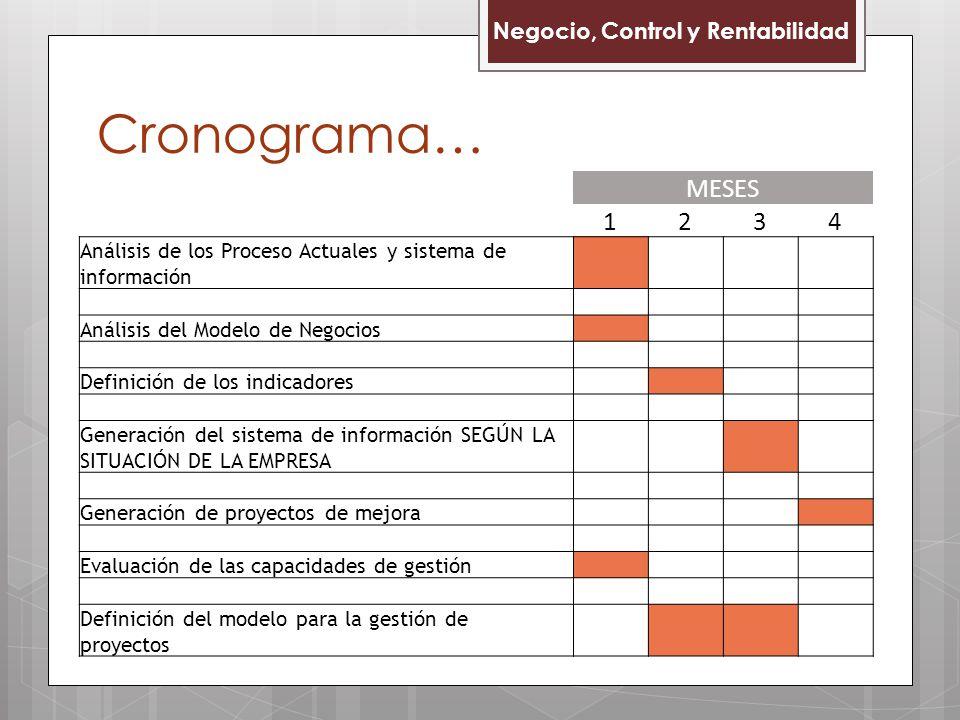 Cronograma… Negocio, Control y Rentabilidad MESES 1234 Análisis de los Proceso Actuales y sistema de información Análisis del Modelo de Negocios Definición de los indicadores Generación del sistema de información SEGÚN LA SITUACIÓN DE LA EMPRESA Generación de proyectos de mejora Evaluación de las capacidades de gestión Definición del modelo para la gestión de proyectos