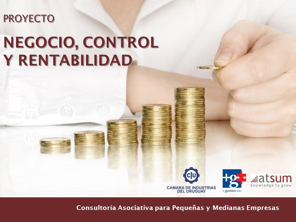 Consultoría Asociativa para Pequeñas y Medianas Empresas PROYECTO NEGOCIO, CONTROL Y RENTABILIDAD PROYECTO NEGOCIO, CONTROL Y RENTABILIDAD