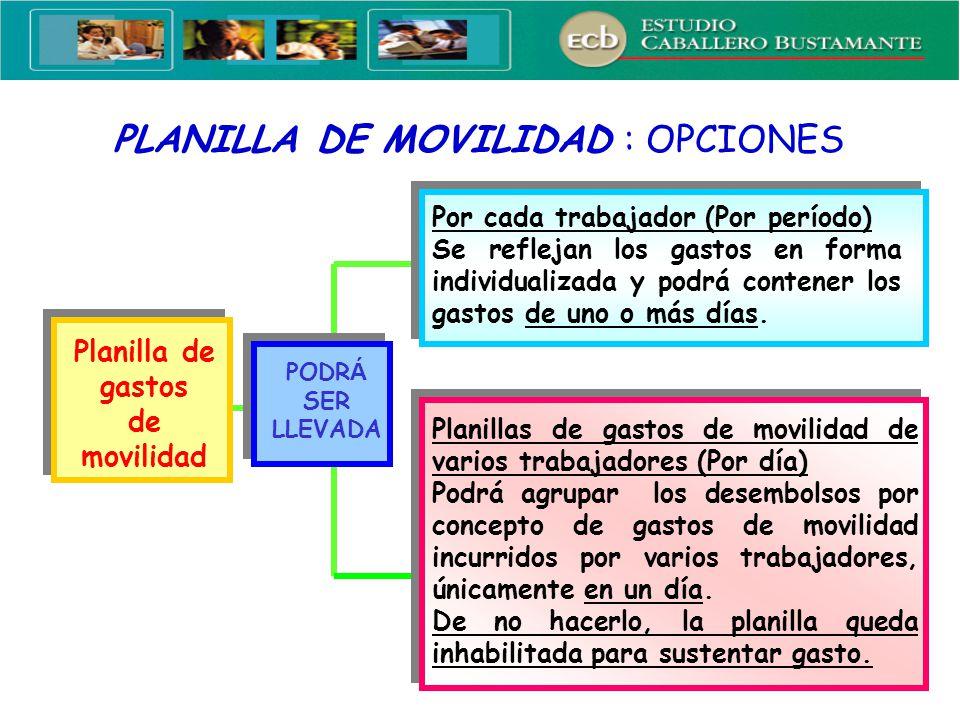 4 PLANILLA DE MOVILIDAD : OPCIONES Planilla de gastos de movilidad PODR Á SER LLEVADA Por cada trabajador (Por período) Se reflejan los gastos en form