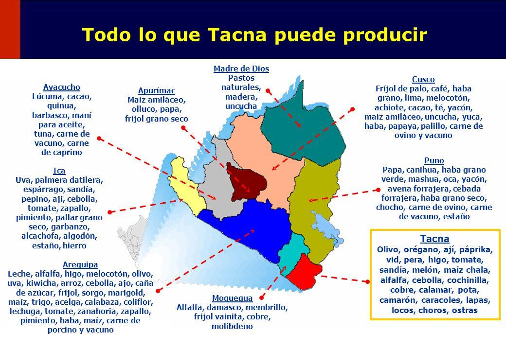 45 Pero que exporta en pequeño Tacna: Principales Productos Exportados 2002 (millones US$) 4 productos concentran el 50% de exportaciones de Tacna US$ 17,4 millones