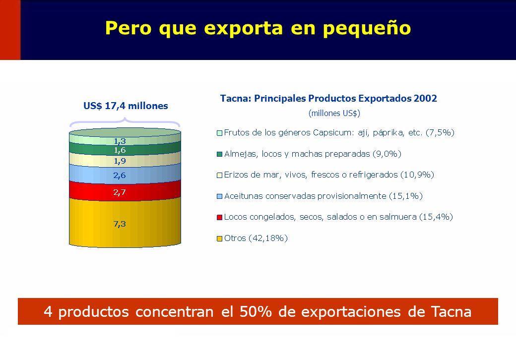 45 Pero que exporta en pequeño Tacna: Principales Productos Exportados 2002 (millones US$) 4 productos concentran el 50% de exportaciones de Tacna US$