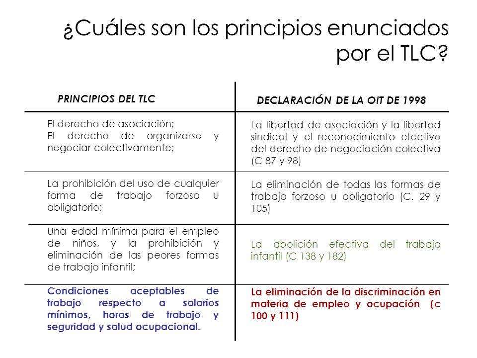 ¿Cuáles son los principios enunciados por el TLC? DECLARACIÓN DE LA OIT DE 1998 La libertad de asociación y la libertad sindical y el reconocimiento e