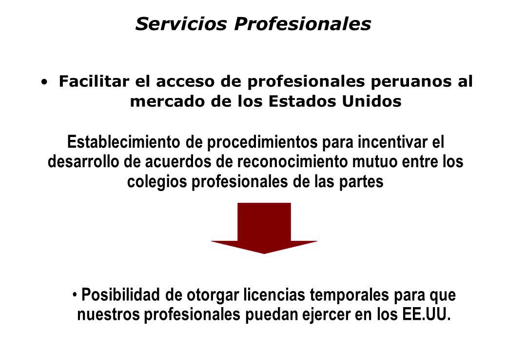 Servicios Profesionales Facilitar el acceso de profesionales peruanos al mercado de los Estados Unidos Establecimiento de procedimientos para incentiv
