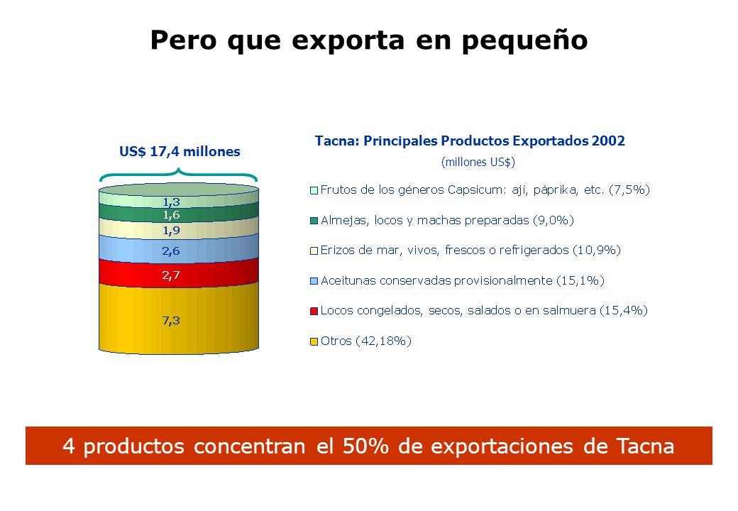 Pero que exporta en pequeño Tacna: Principales Productos Exportados 2002 (millones US$) 4 productos concentran el 50% de exportaciones de Tacna US$ 17