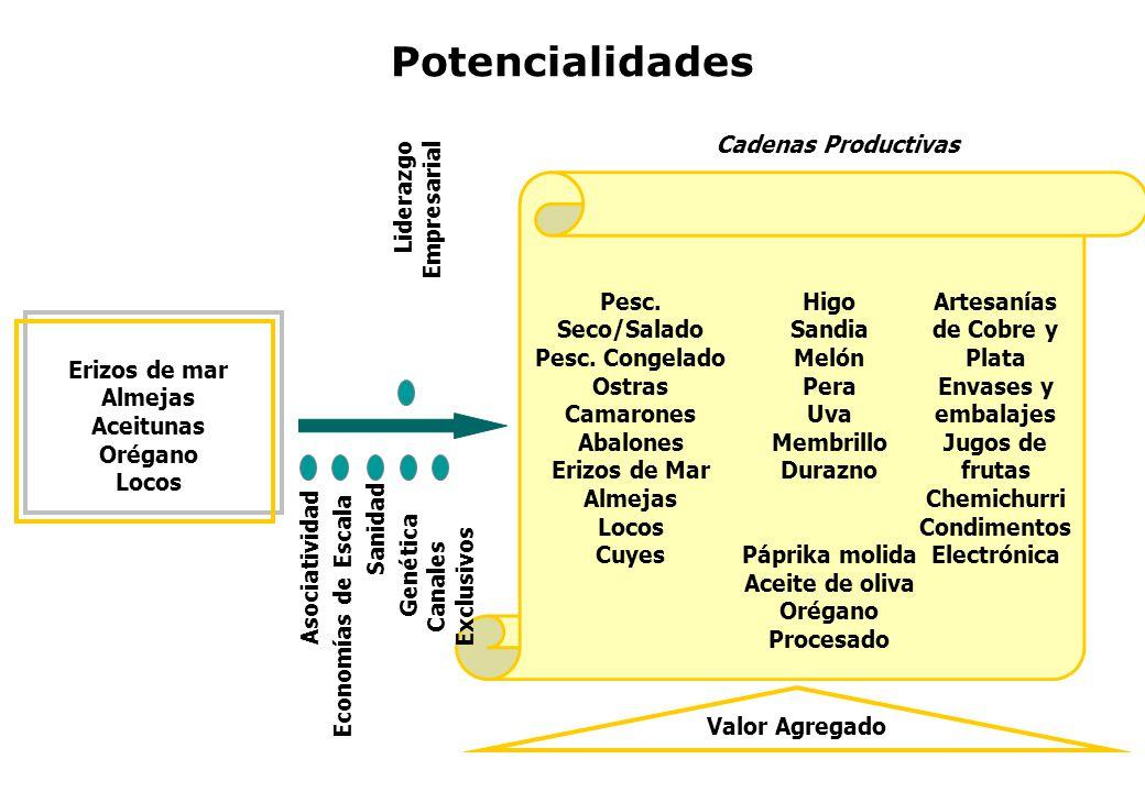 Potencialidades Erizos de mar Almejas Aceitunas Orégano Locos Cadenas Productivas Pesc. Seco/Salado Pesc. Congelado Ostras Camarones Abalones Erizos d