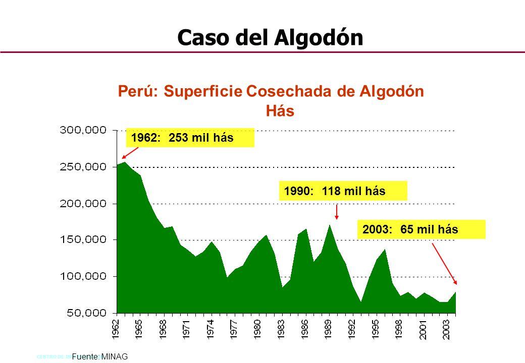CENTRO DE INVESTIGACION 48 Perú: Superficie Cosechada de Algodón Hás 1962: 253 mil hás 2003: 65 mil hás Fuente: MINAG 1990: 118 mil hás Caso del Algod