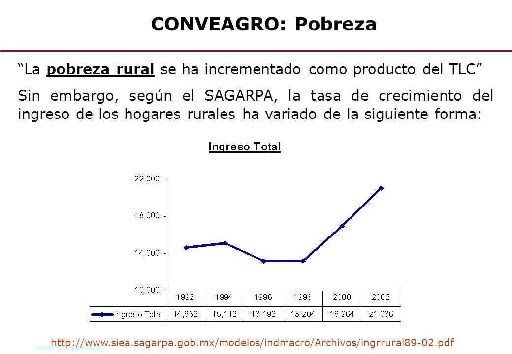 CENTRO DE INVESTIGACION 64 La pobreza rural se ha incrementado como producto del TLC Sin embargo, según el SAGARPA, la tasa de crecimiento del ingreso