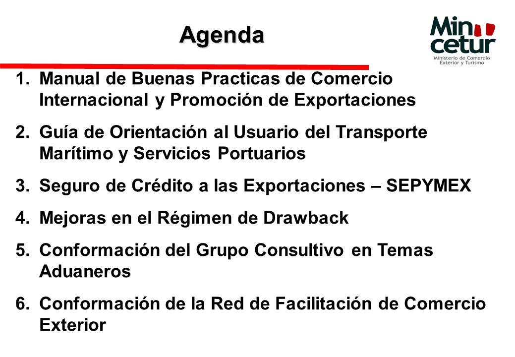 Agenda 1.Manual de Buenas Practicas de Comercio Internacional y Promoción de Exportaciones 2.Guía de Orientación al Usuario del Transporte Marítimo y Servicios Portuarios 3.Seguro de Crédito a las Exportaciones – SEPYMEX 4.Mejoras en el Régimen de Drawback 5.Conformación del Grupo Consultivo en Temas Aduaneros 6.Conformación de la Red de Facilitación de Comercio Exterior