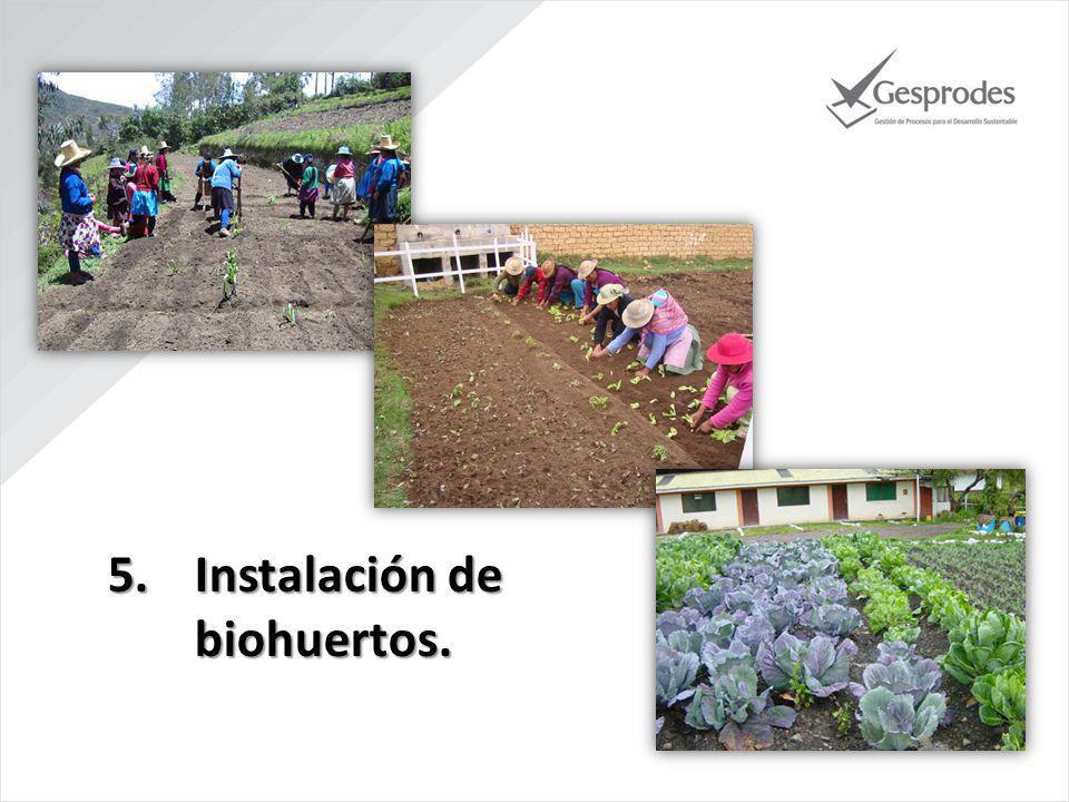 5.Instalación de biohuertos.