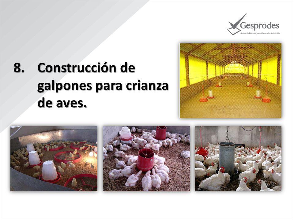 8.Construcción de galpones para crianza de aves.