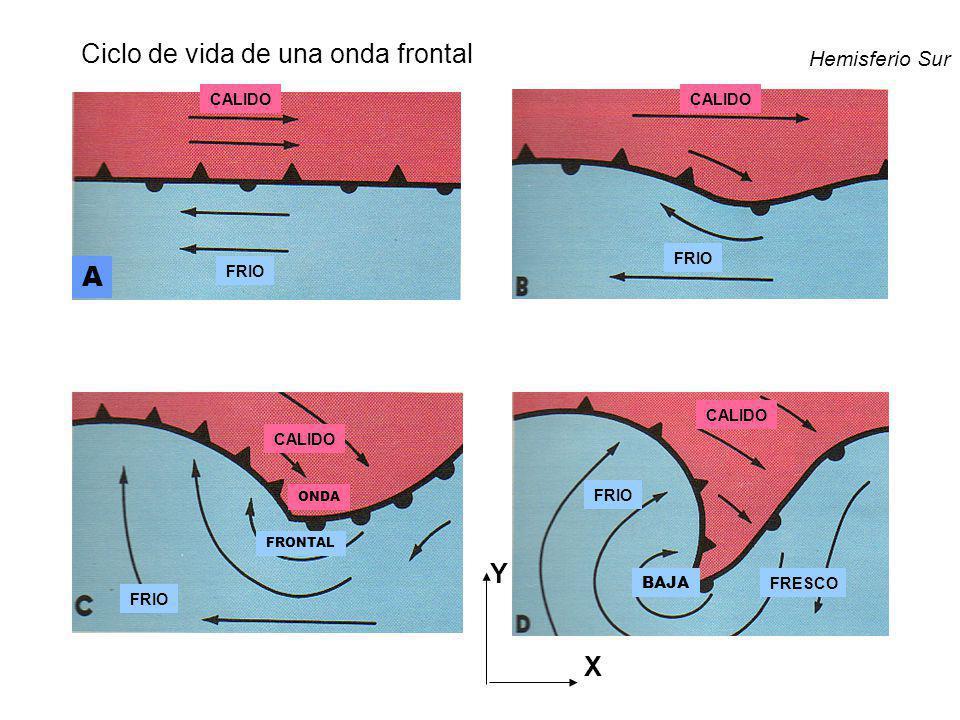 CALIDO FRIO FRESCO BAJA FRONTAL ONDA A Hemisferio Sur Y X Ciclo de vida de una onda frontal