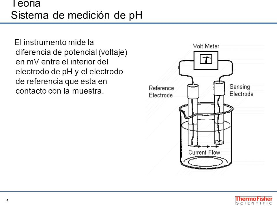 5 Teoria Sistema de medición de pH El instrumento mide la diferencia de potencial (voltaje) en mV entre el interior del electrodo de pH y el electrodo