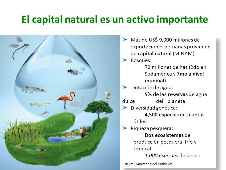 El capital natural es un activo importante Más de US$ 9,000 millones de exportaciones peruanas provienen de capital natural (MINAM) Bosques: 72 millon
