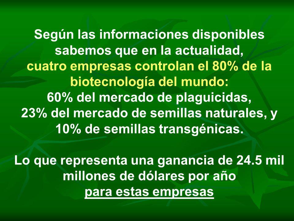Según las informaciones disponibles sabemos que en la actualidad, cuatro empresas controlan el 80% de la biotecnología del mundo: 60% del mercado de plaguicidas, 23% del mercado de semillas naturales, y 10% de semillas transgénicas.